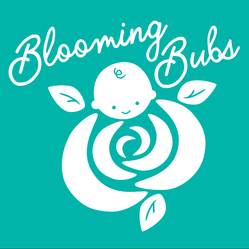 BB-logo-white-on-turquoise